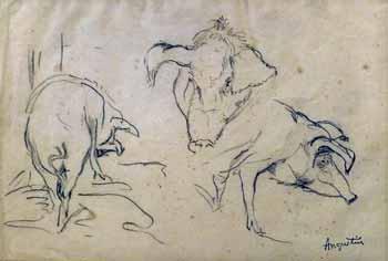 Louis Anquetin - Etude de cochons (dos, face, profil)