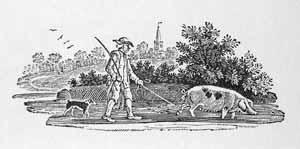 Thomas Bewick - A Man Driving a Sow