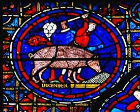 Chartres Cathedral - December - pig killing