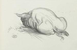 Henri de Toulouse-Lautrec - Le Cochon