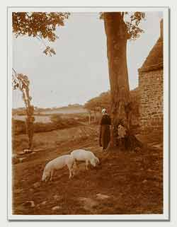 Charles Augustin Lhermitte - Bretagne, femme gardant des cochons #1