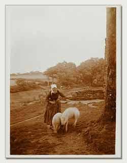 Charles Augustin Lhermitte - Bretagne, femme gardant des cochons #2