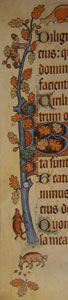 Luttrell Psalter - The swineherd
