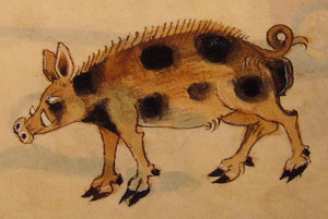 Luttrell Psalter - Fierce boar