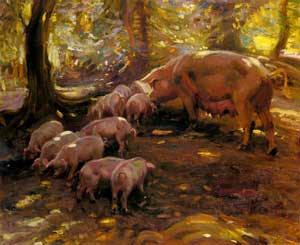 Alfred James Munnings - Pigs In A Wood, Cornwall