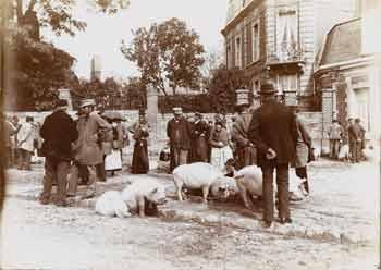 Gustave Popelin - Marchands de porcs #1