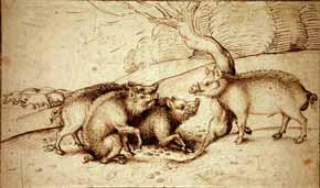 Martin Schongauer - Boar Family