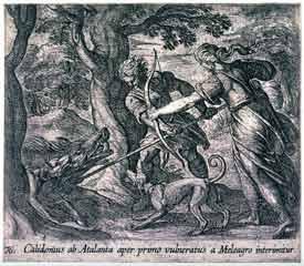 Antonio Tempesta - Calidonius ab Atalanta aper primo vulneratus a Meleagro interimitur