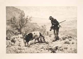 Paul Vayson - La recherche de la truffe