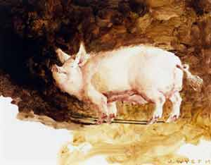 James Wyeth - Pig