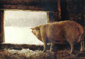 James Wyeth - Winter Pig