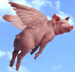flying Pigasus