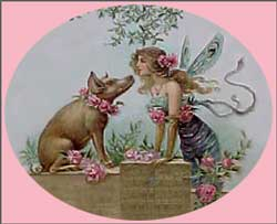 pig and fairy