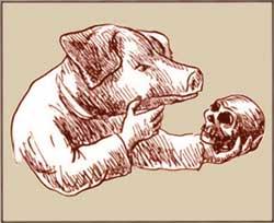 Hamlet pig